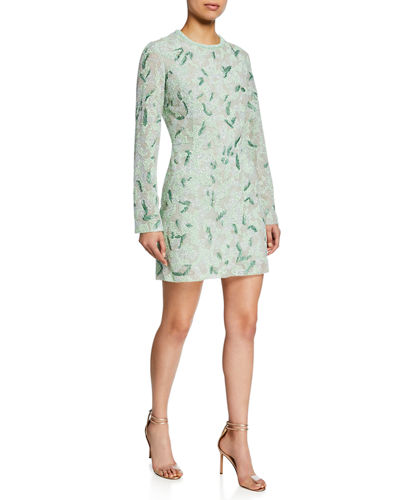 Long-Sleeve Embroidered Mini Dress