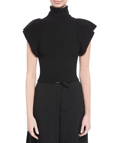 Jae Turtleneck Flutter-Sleeve Wool Top